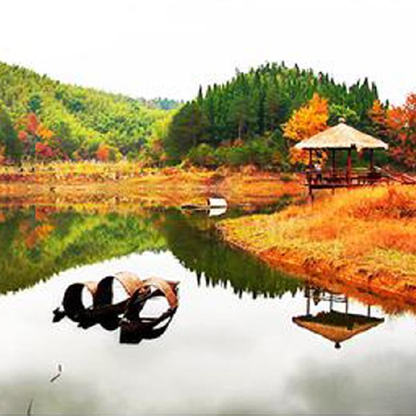 千岛湖旅游景点门票预订◆千岛湖龙川湾湿地门票 船票